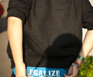 lesbian, gay, and legalize gay image