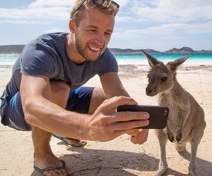 animal, beach, and kangaroo image