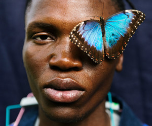butterfly, male model, and model image