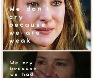 divergent and the hunger games image