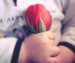 baby, flower, and rose image