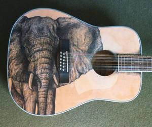 elephant, guitar, and music image