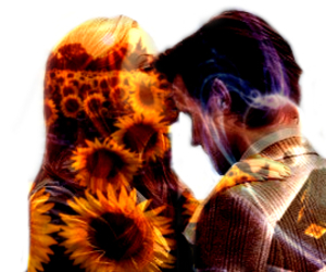 doctor who, goodbye, and sunflowers image