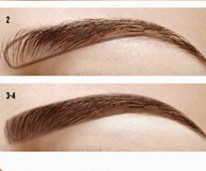 how to shape eyebrows image