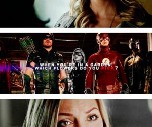 arrow, Black Canary, and DC image