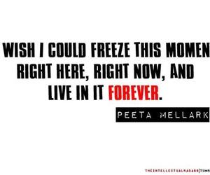 peeta mellark, hunger games, and peeta image