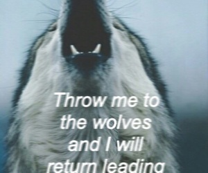 wolf, quote, and strong image