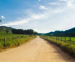 beautiful, farm life, and nature image