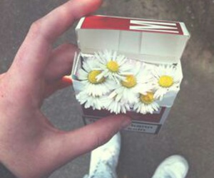 flowers, cigarette, and smoke image