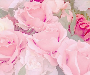 pink, beautiful, and pastel image