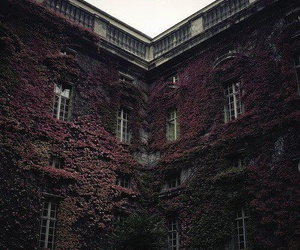 building, nature, and house image