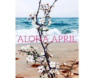 Aloha, new month, and april image