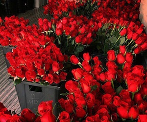 bouquets, red roses, and flowers image