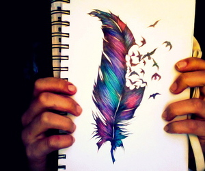 art, feather, and colour image
