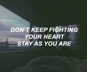 fighting, heart, and stay image