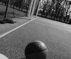 Basketball, passion, and sport image