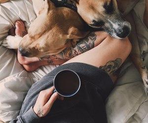 dog, tattoo, and coffee image