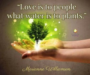 plants, water, and quotes image