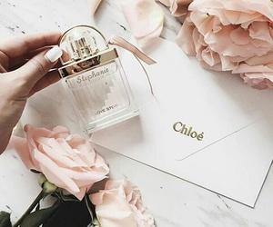 beauty, blush, and chic image