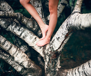 branches, legs, and girl image