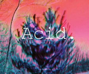 acid, drugs, and tree image
