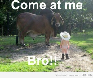 awesome, bro, and little boy image