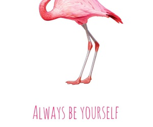 always, ego, and flamingo image