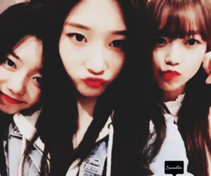 chaeyeon, i.o.i, and hyeri image