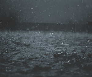 rain and water image