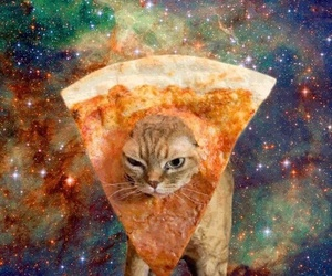 cat, pizza, and galaxy image