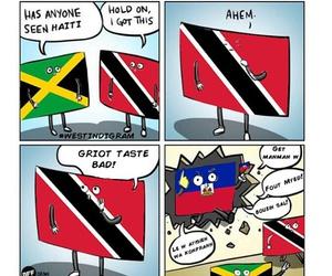 funny, haha, and jamaica image