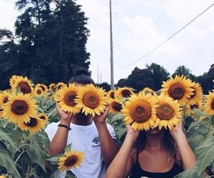 flowers, sunflower, and couple image