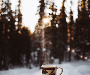 coffee and forest image