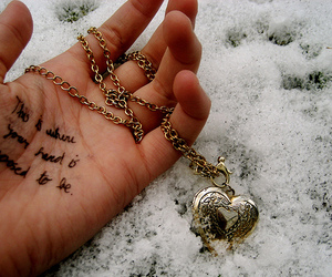 heart, hand, and snow image