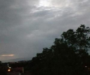 blurry photo 6am trees image