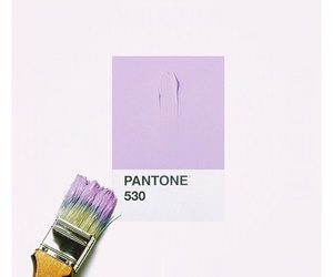 pantone, paint, and pale image