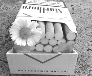 cigarette, flowers, and smoke image