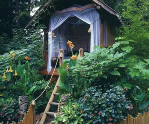 garden, house, and nature image