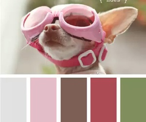 color, color combinations, and combinations image