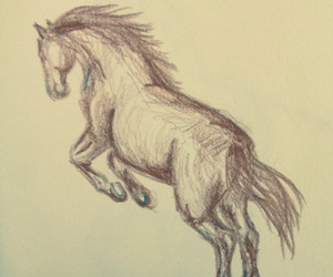 brown, drawing, and horse image