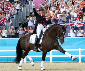 horse, dressage, and valegro image