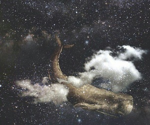 dreams, space, and whale image