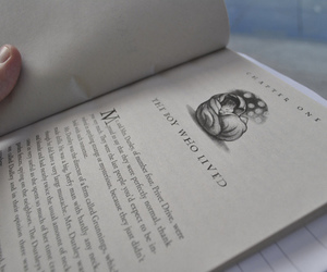 book, tumblr, and harry potter image