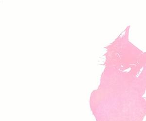 cats, kawaii, and kitties image