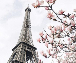 france, like, and spring image