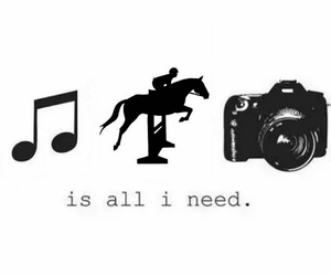 black and white, horses, and music image