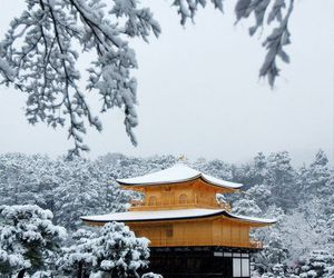 japan, Temple, and kyoto image