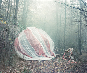 forest, art, and balloon image