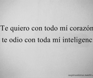 love, intelligence, and frases image