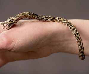 jewelry and snake image